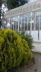 tepidario2